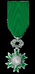 Médaille d'ambassade de ls République de Pastille
