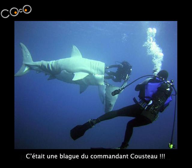 comm-cousteau